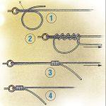 Роза Упоительная радуга