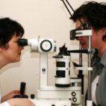 Розы центифолия
