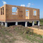 Розы Перкинса